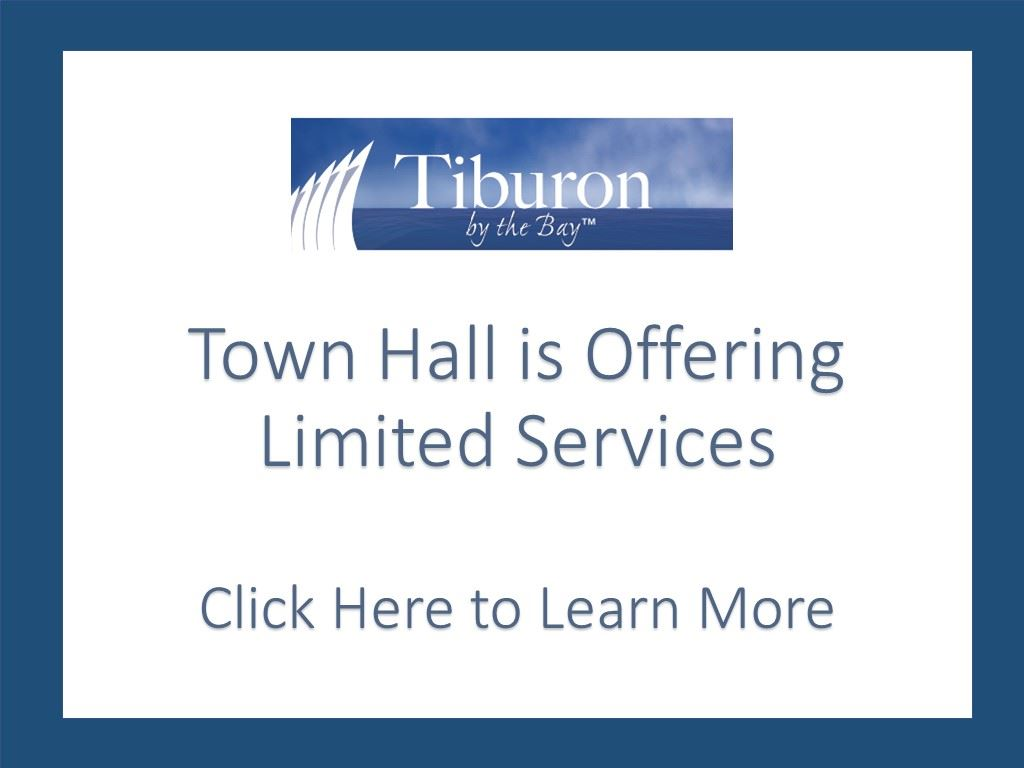 Town Hall Limited Services